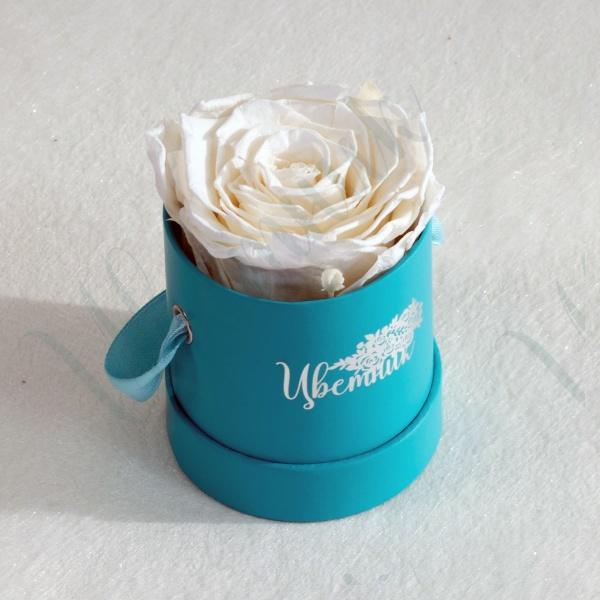 Стабилизированная белая роза в круглой коробке 1 шт.