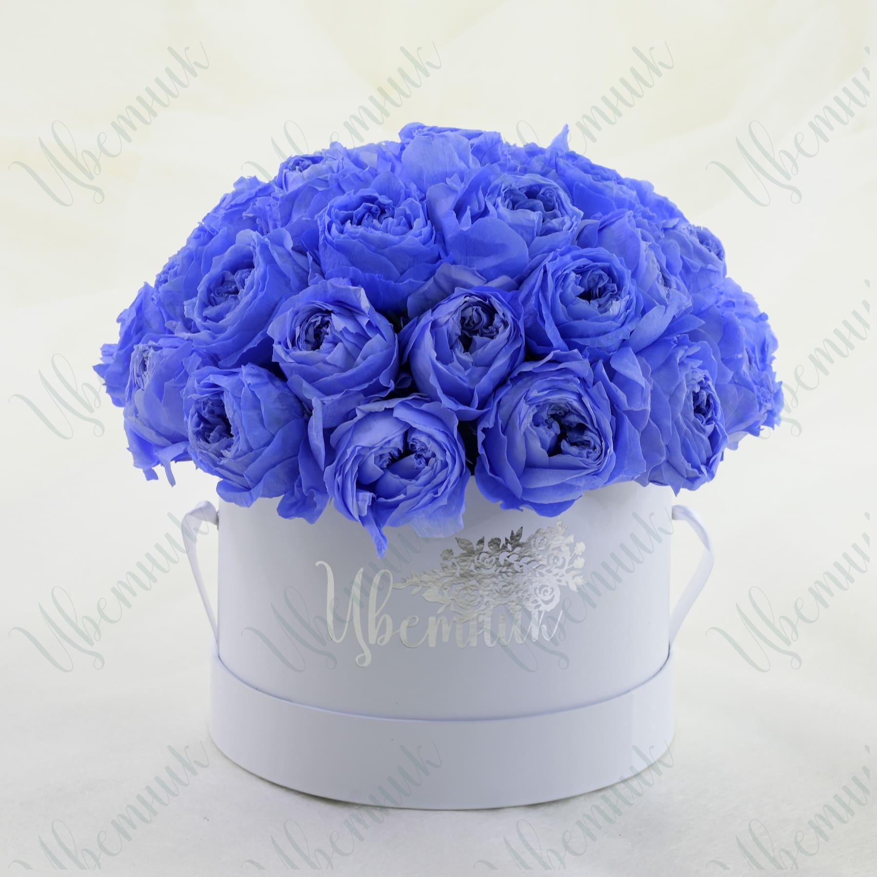 Стабилизированные черничные розы в круглой коробке 34 шт.