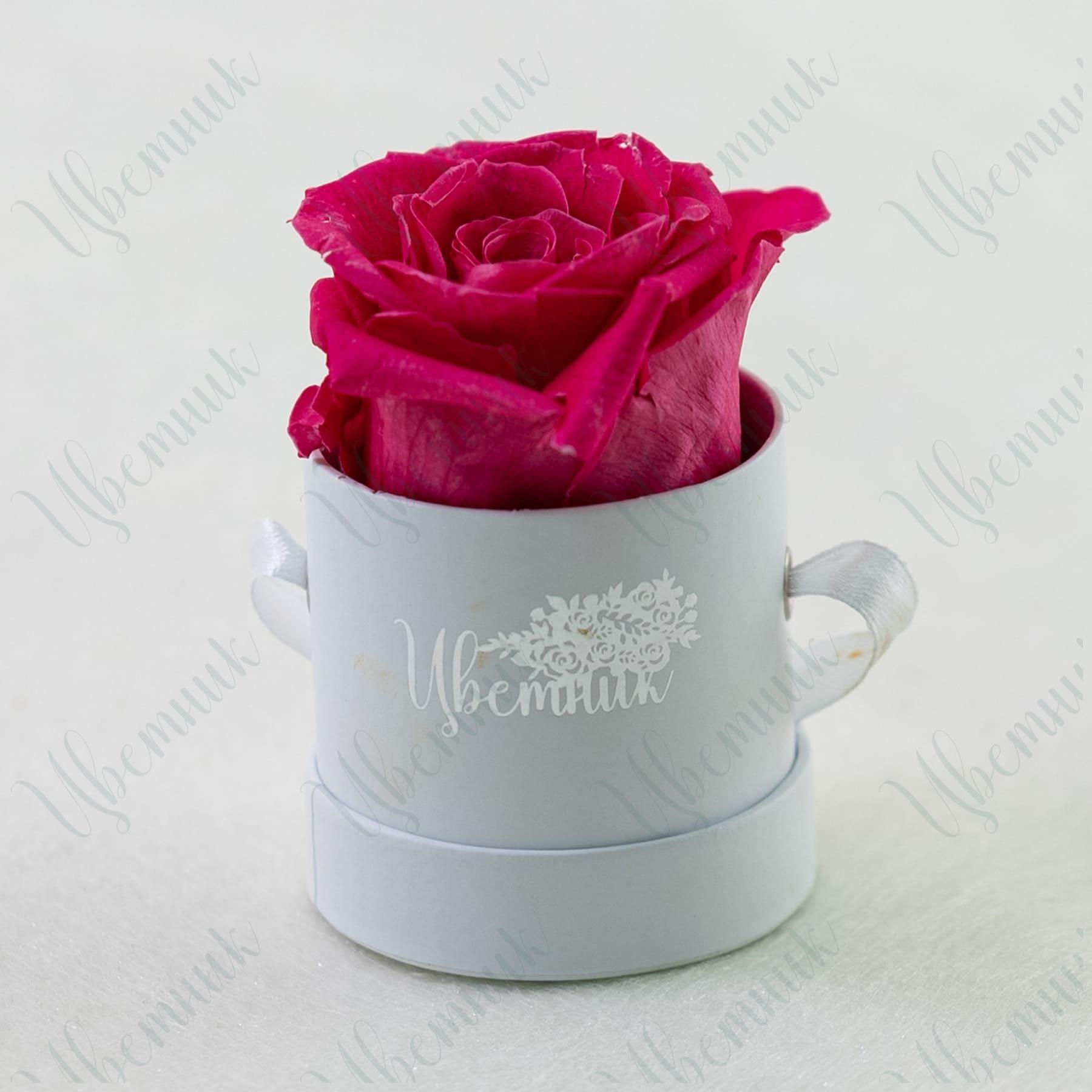 Стабилизированная розовая роза в круглой коробке 1 шт.