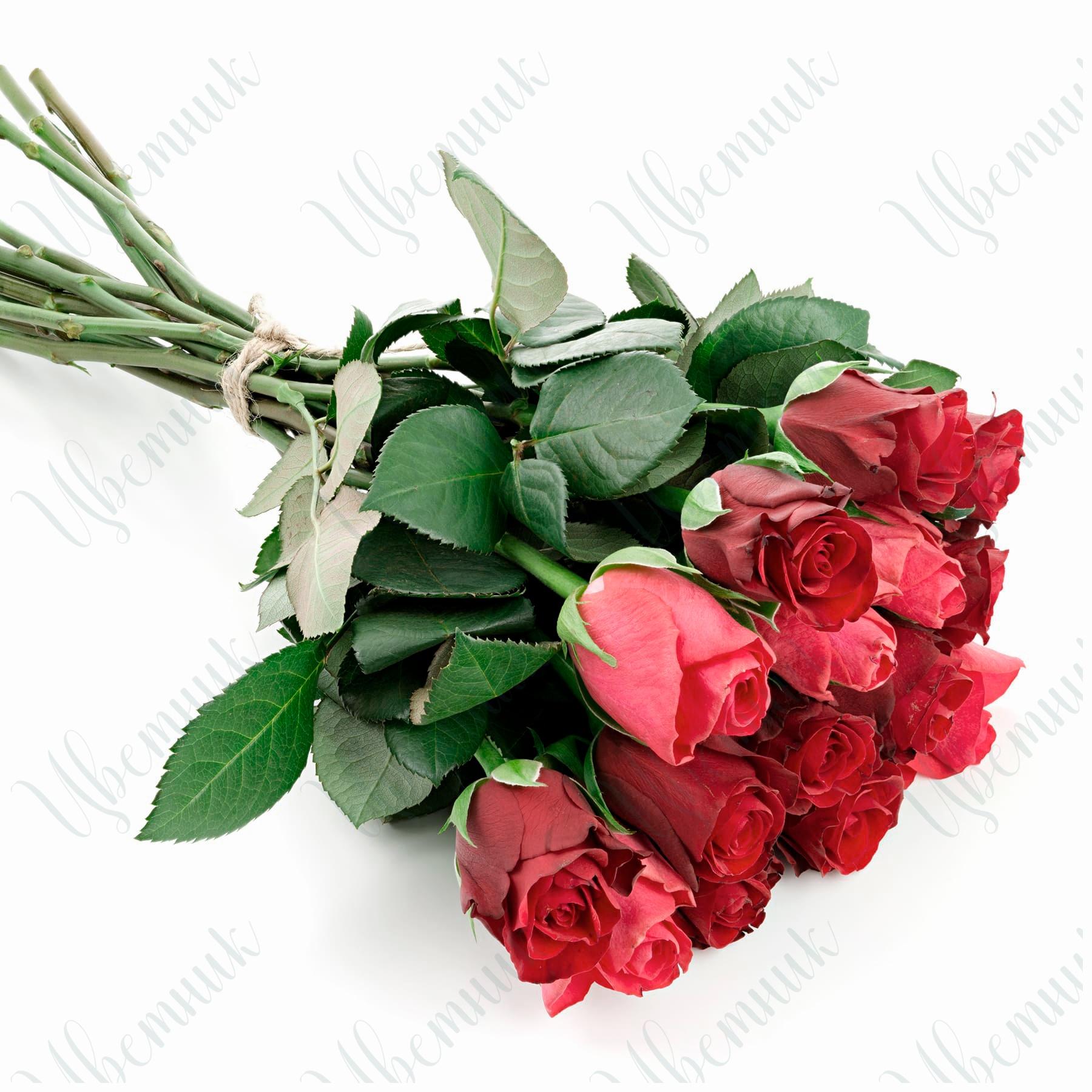 Лаконичный букет из 7 красных и 8 алых роз