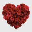 Сердце из 10 красных и 17 алых роз