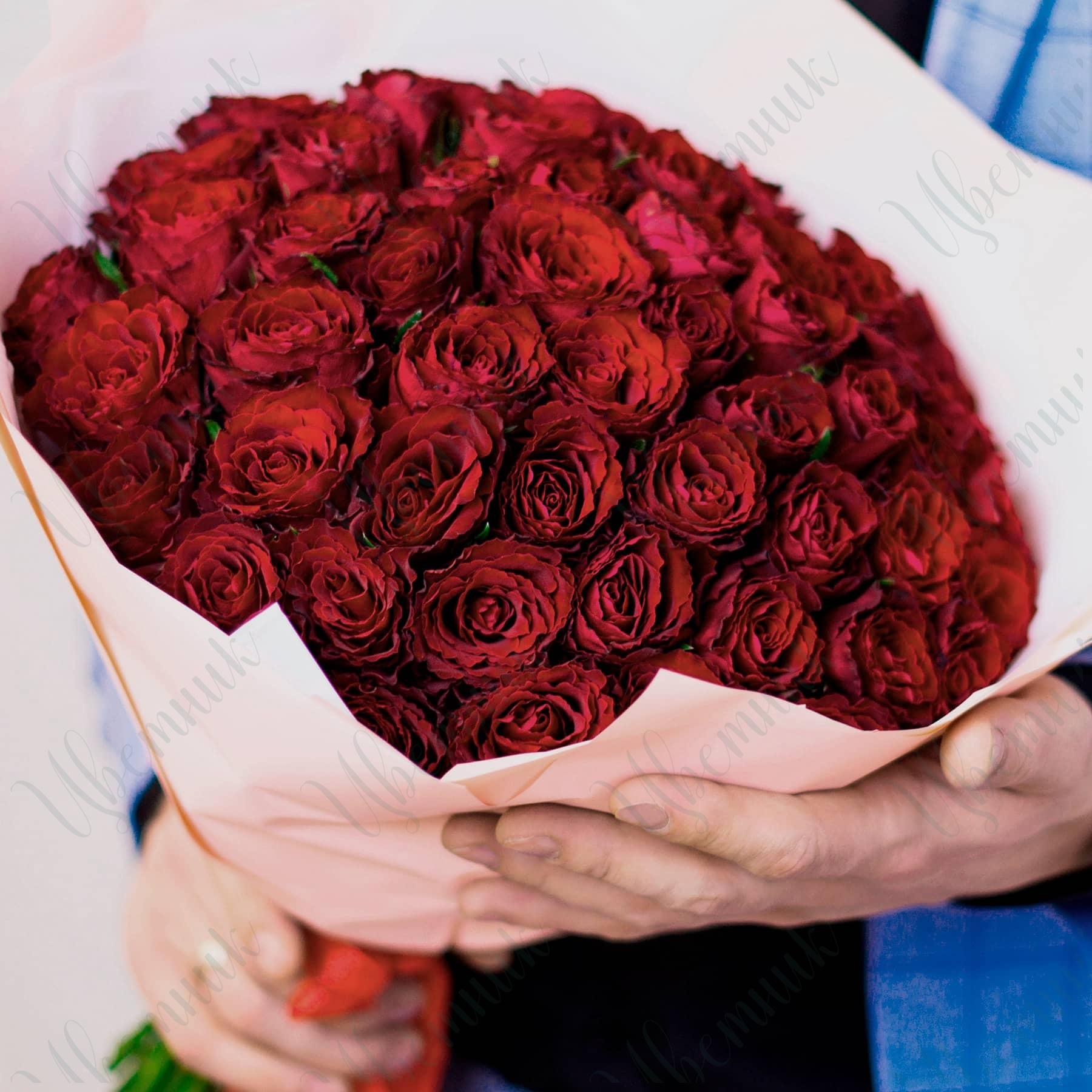 Букет из 51 красной розы, высотой 45 см в упаковке из матовой пленки