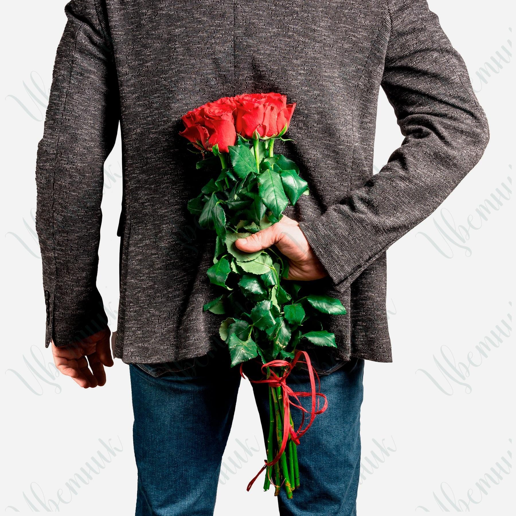 7 Красных роз под ленту