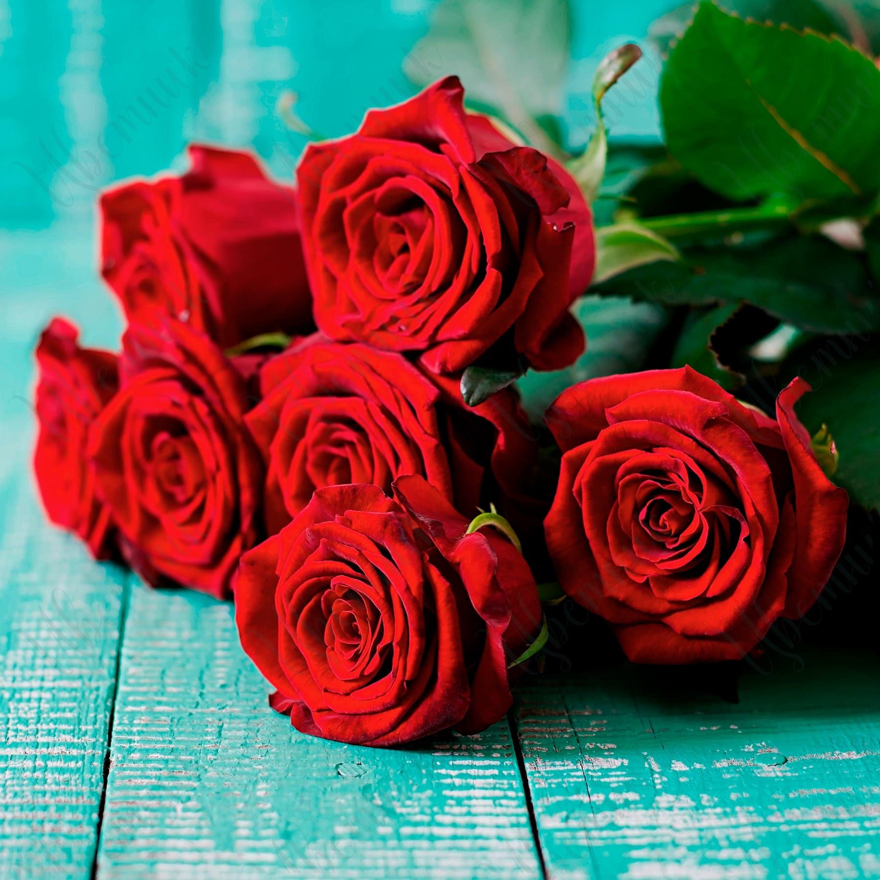 Букет из 7 роз на длинном стебле