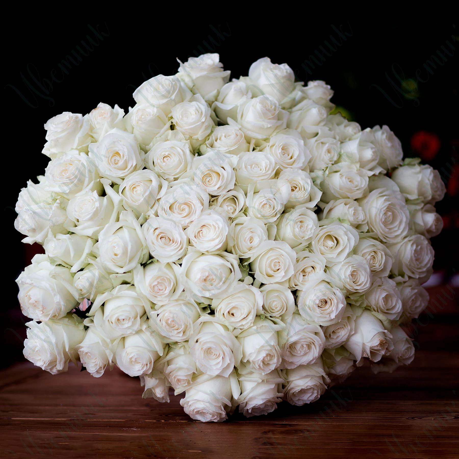 Роскошный букет белых роз