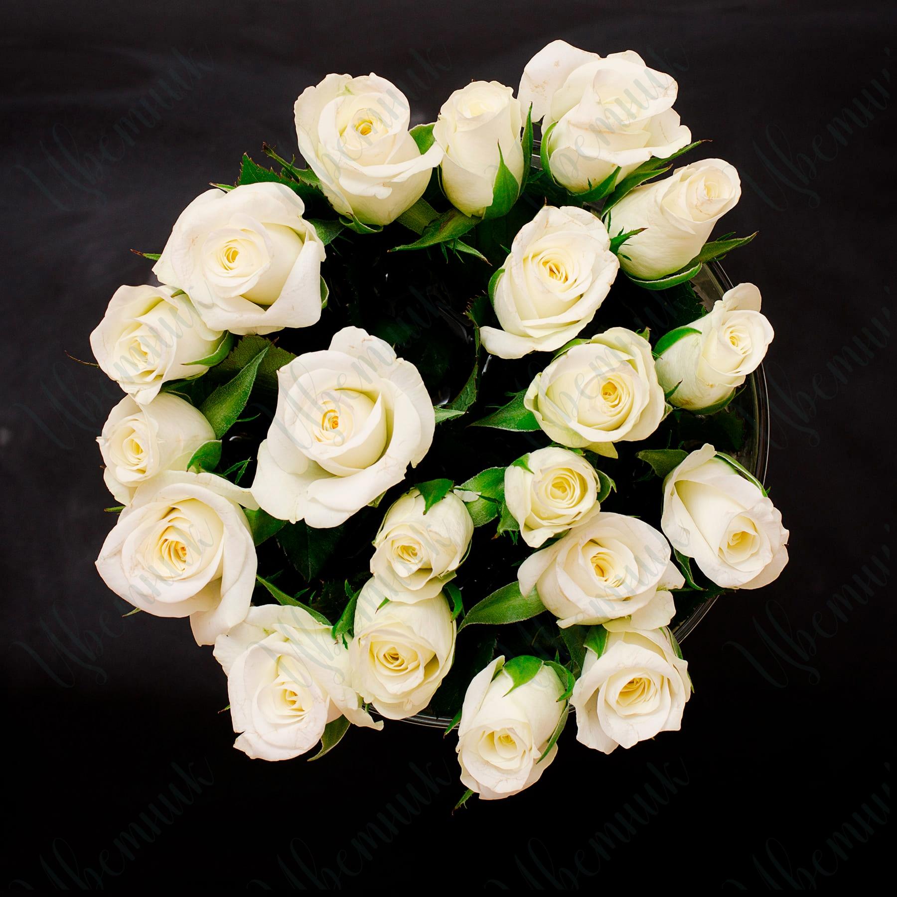 Милый букет из 19 белых роз