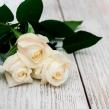 3 белые розы высотой 80 см под ленту