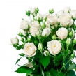 Букет из кустовых белых роз под ленту