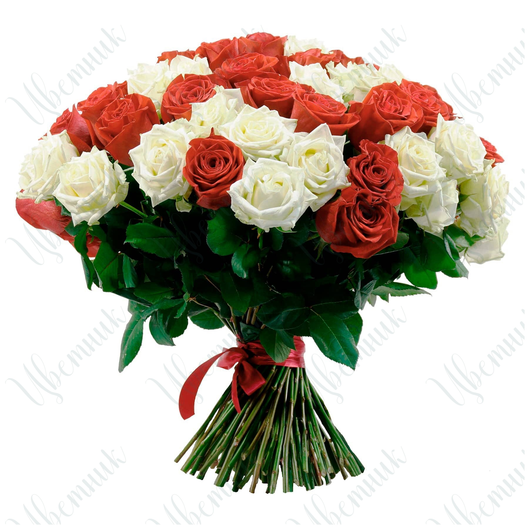 Букет из красных и белых роз, высотой 60 см