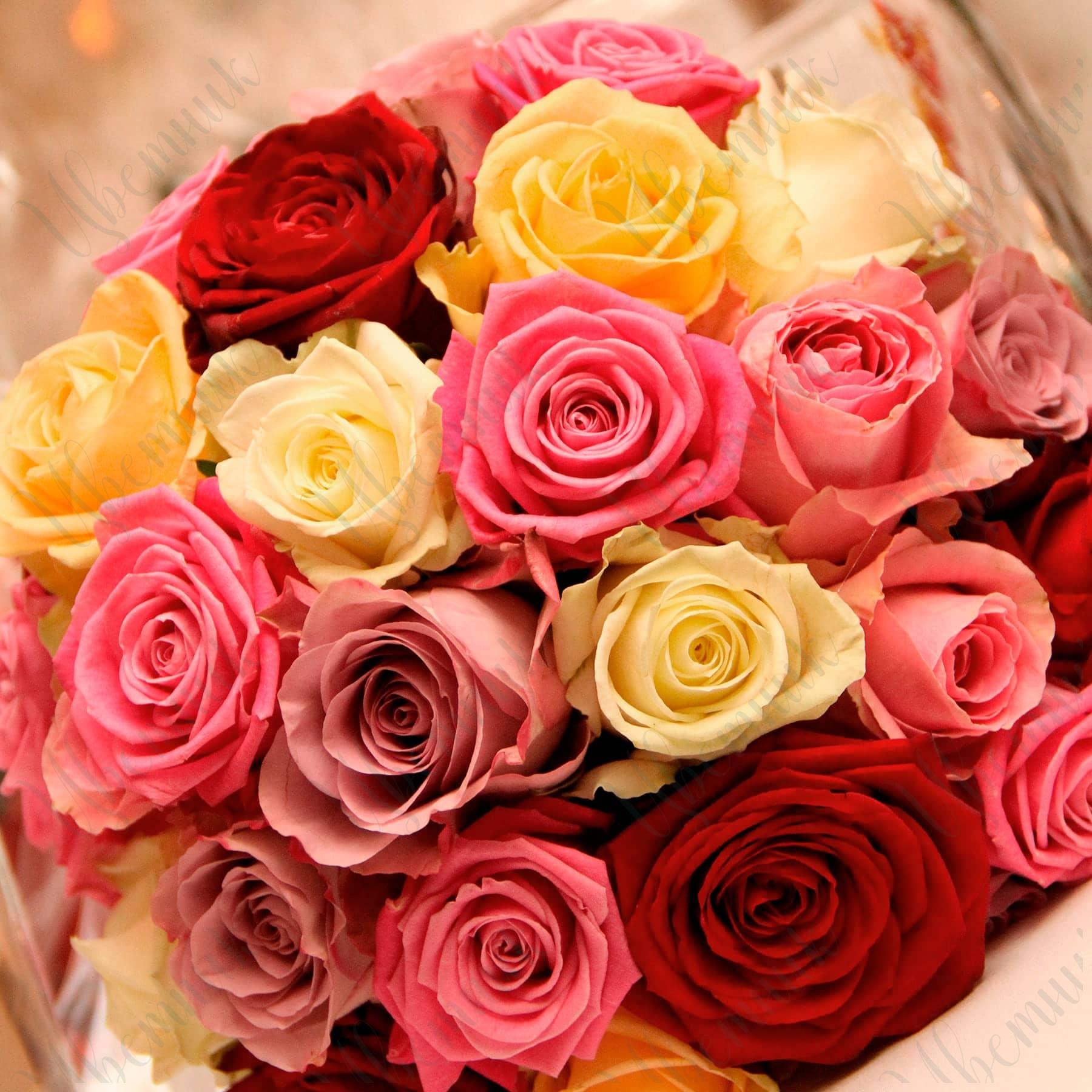 Букет из розовых, сиреневых и кремовых роз