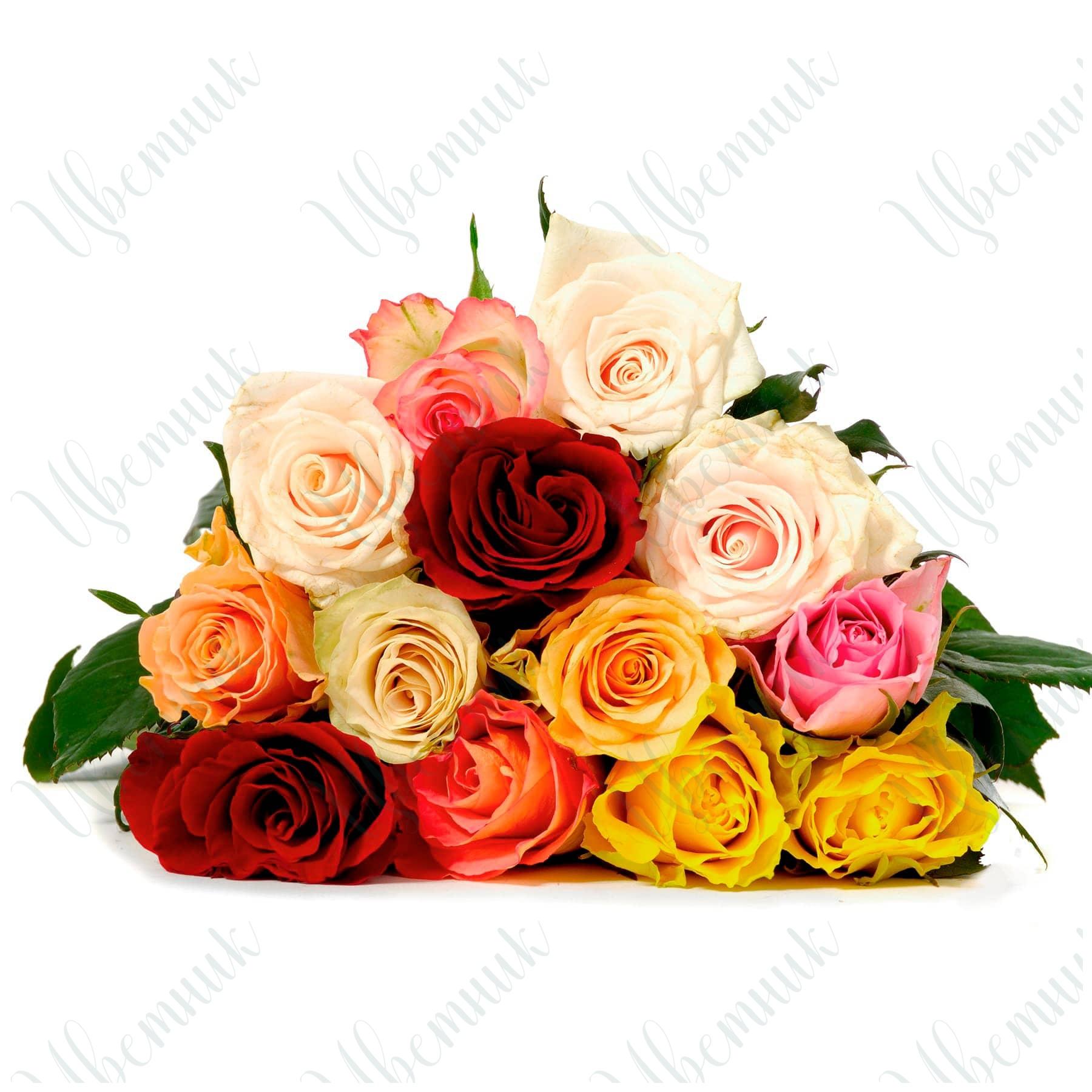 Яркое ассорти из 13 роз
