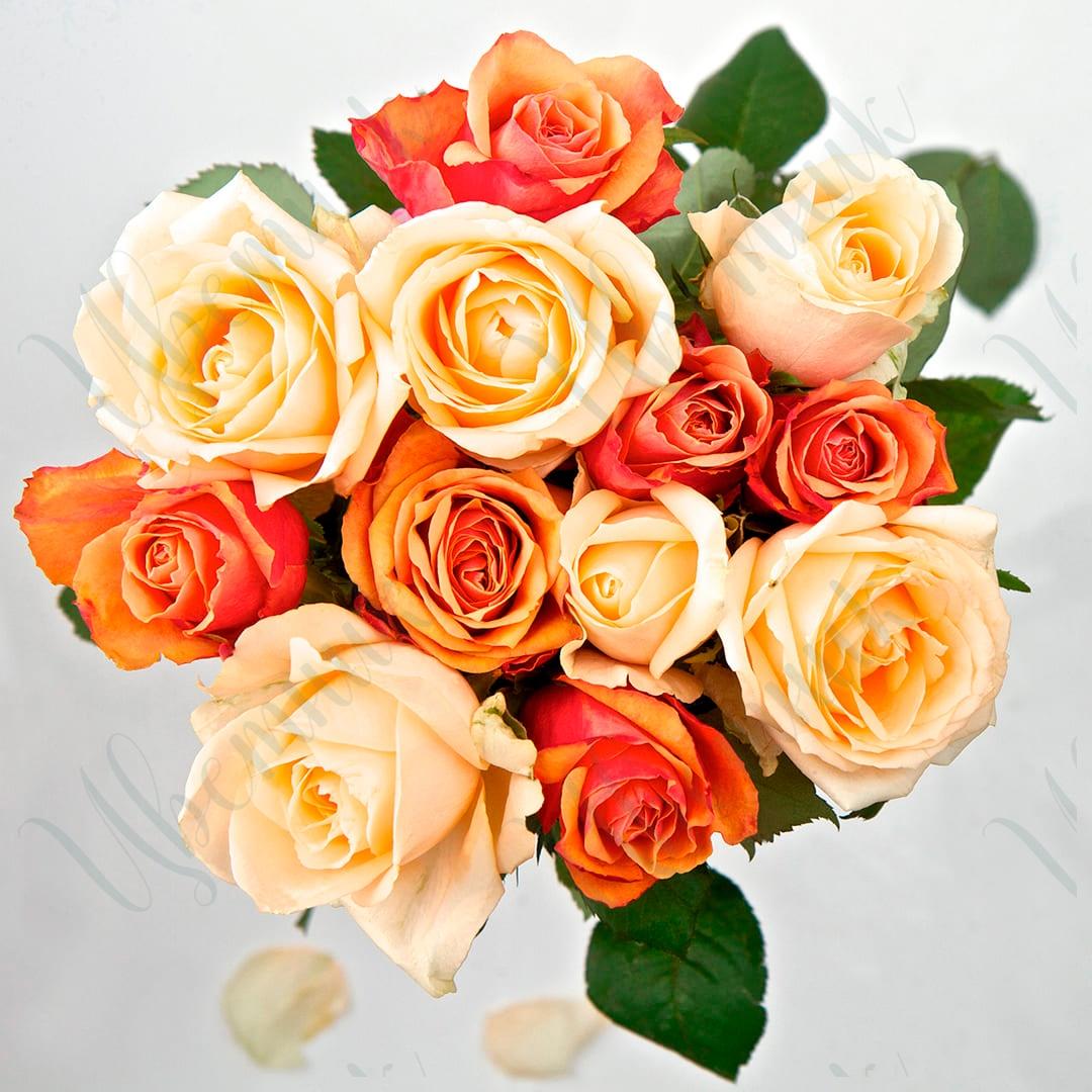 Букет-комплимент из кремовых и оранжевых роз