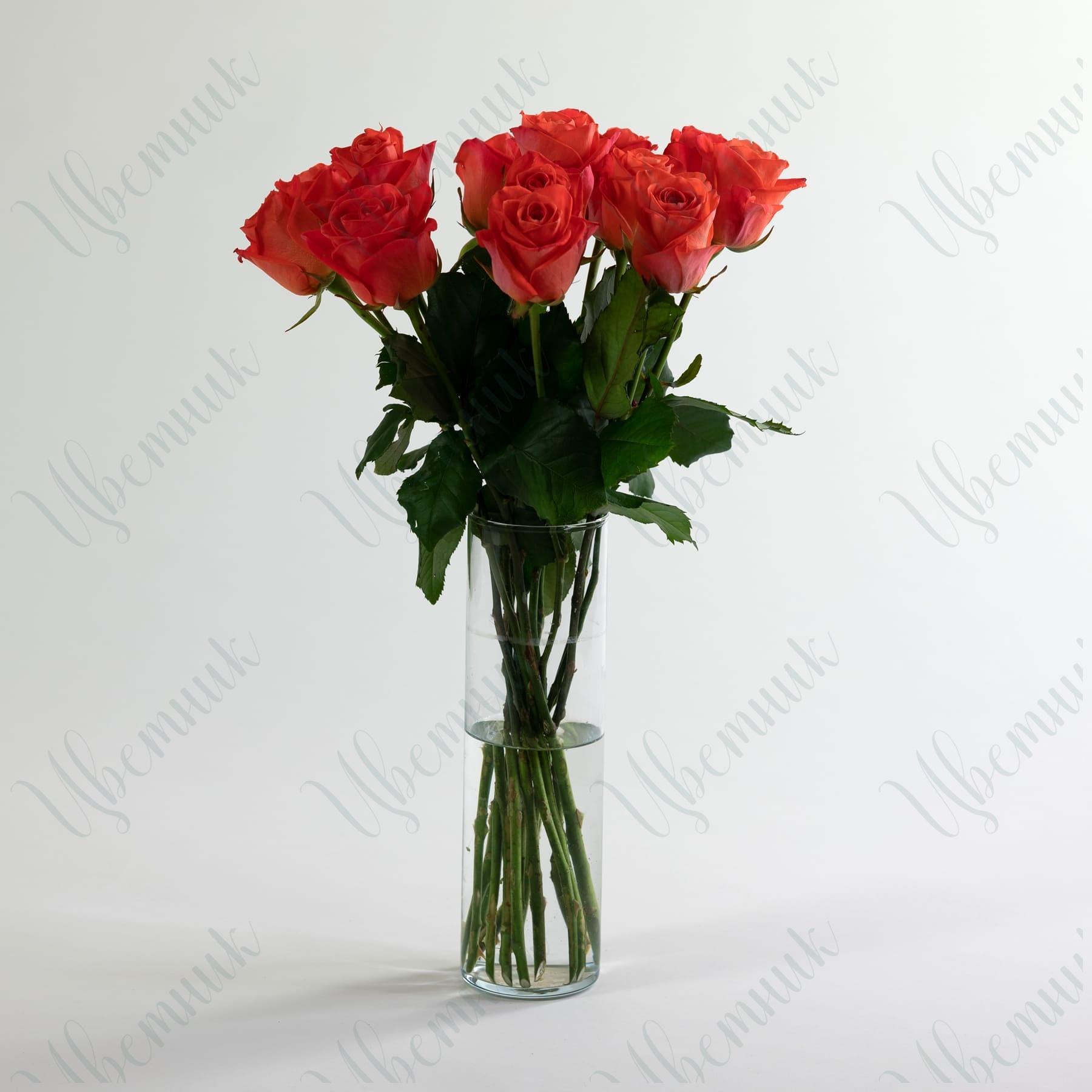 Роза Карина 50-60 см 1 шт.