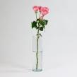 Роза кустовая Джульета 1 шт.
