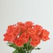 Роза Карина 40 см 1 шт.