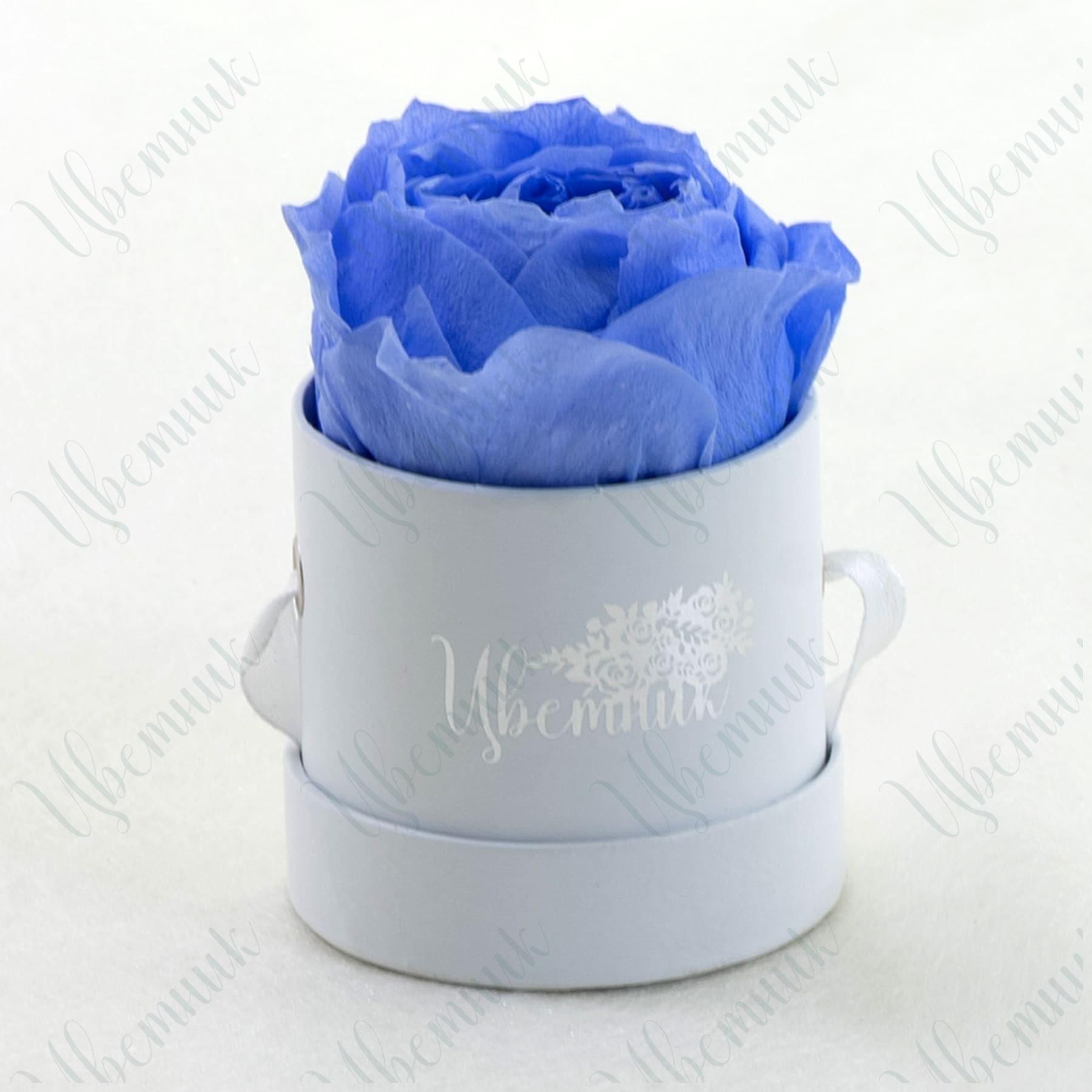 Стабилизированная черничная роза в круглой коробке 1 шт.
